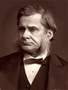 T.H.Huxley%28Woodburytype%29