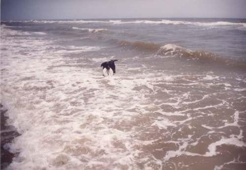 Struggling against the tide